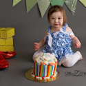 New Bedford Newborn and Baby Photographer Does Wizard of Oz Themed Cake Smash