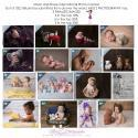 Massachusetts Newborn and Baby Photographer has 3 Finalist Images in Shoot and Share International Photo Contest