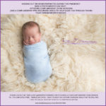 Virtual Newborn Sessions